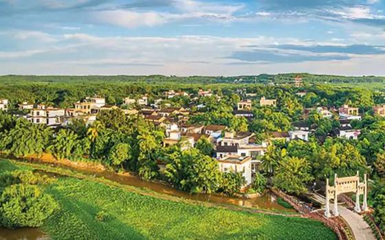儋州市成立乡村振兴工作指挥部办公室及下设7个机构