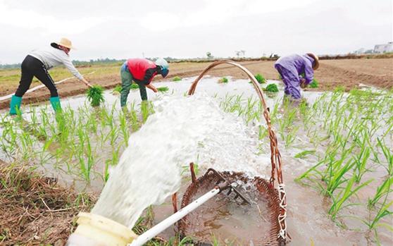 儋州:为稻田灌水 为春耕加油